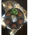 Copper FLEX 3DCPI